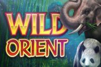 ワイルドオリエントスロット(Wild Orient Slot)