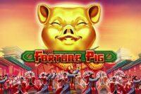 フォーチュンピッグ(Fortune Pig)