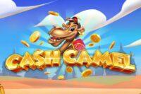 キャッシュキャメル(Cash Camel)