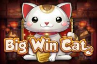 ビッグウィンキャット(Big Win Cat)