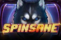 スピンセーン(Spinsane)